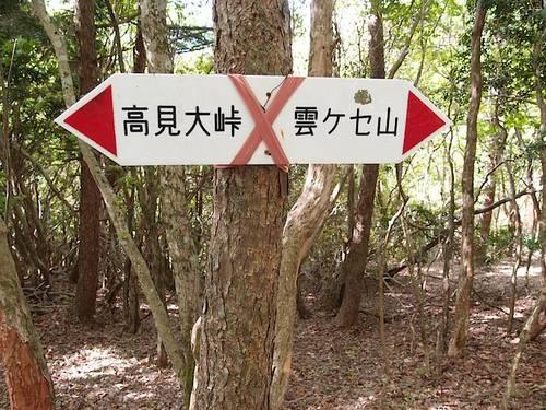 daikou04.jpg