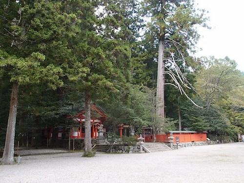gakuno11.jpg
