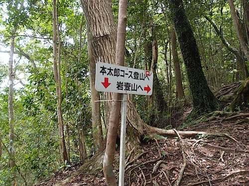 iwatubo20.jpg
