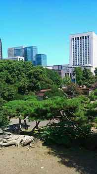 mikasayama0915.jpg